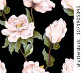 seamless pattern with delicate...   Shutterstock .eps vector #1071905345