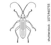 beetle icon. simple element... | Shutterstock .eps vector #1071960755