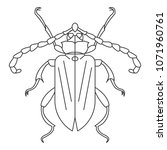 beetle icon. simple element... | Shutterstock .eps vector #1071960761