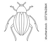 beetle icon. simple element... | Shutterstock . vector #1071962864