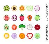 vector illustration of fruits...   Shutterstock .eps vector #1071979454