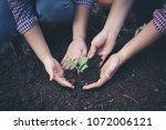 farmer planting  tree in the... | Shutterstock . vector #1072006121