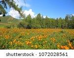 spring landscape. mountain... | Shutterstock . vector #1072028561