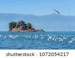 dali ouhai xiao putuo scenery... | Shutterstock . vector #1072054217