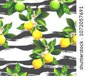 seamless citrus vector pattern... | Shutterstock .eps vector #1072057691