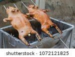 barbecued suckling pig grilled | Shutterstock . vector #1072121825