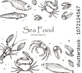 vector illustration. sea food   ... | Shutterstock .eps vector #1072124567