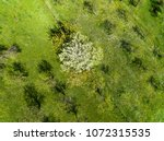 amazing drone view of trees in...   Shutterstock . vector #1072315535