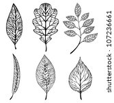 collection of leaves. vector set | Shutterstock .eps vector #107236661