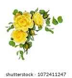 Yellow Rose Flowers With...