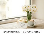 white yellow daffodil ... | Shutterstock . vector #1072437857