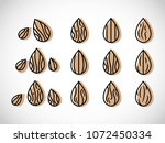 almond icon vector illustration | Shutterstock .eps vector #1072450334