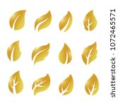 artistic collection of gold...   Shutterstock .eps vector #1072465571