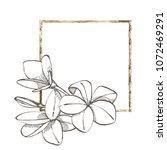 plumeria flowers. summer...   Shutterstock .eps vector #1072469291