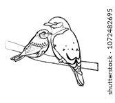 grunge beauty bird animal with...   Shutterstock .eps vector #1072482695