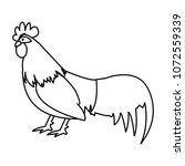 line rooster farm animal with...   Shutterstock .eps vector #1072559339