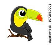 cute cartoon toucan vector... | Shutterstock .eps vector #1072580201