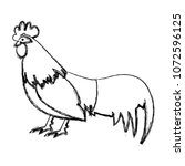 grunge rooster farm animal with ...   Shutterstock .eps vector #1072596125