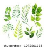 green leaves set isolated on...   Shutterstock .eps vector #1072661135
