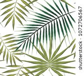 seamless pattern of exotic palm ... | Shutterstock .eps vector #1072706567