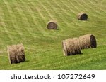 round hay bales lay in the open ... | Shutterstock . vector #107272649