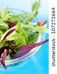 fresh salad leaves   Shutterstock . vector #107272664