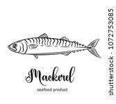 vector mackerel. hand drawn... | Shutterstock .eps vector #1072753085