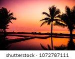 silhouette coconut palm tree... | Shutterstock . vector #1072787111