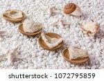 nourishing food bird nest   Shutterstock . vector #1072795859