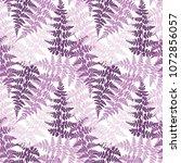fern frond herbs  tropical... | Shutterstock .eps vector #1072856057