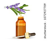 lavender extract oil in glass... | Shutterstock .eps vector #1072927709