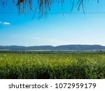 view of the nature  in the... | Shutterstock . vector #1072959179