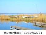 the natural preserve duemmer... | Shutterstock . vector #1072962731