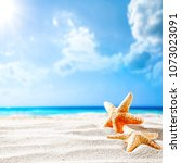 summer background of shell on... | Shutterstock . vector #1073023091