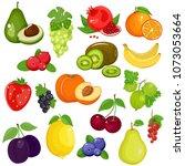 fruits and berries in cartoon... | Shutterstock . vector #1073053664