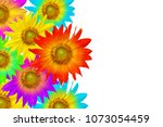 Group Of Colorful Sunflowers...