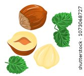hazelnut colored icons in... | Shutterstock . vector #1073068727