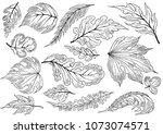 hand sketched vector vintage...   Shutterstock .eps vector #1073074571