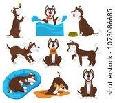 husky dog cartoon pet playing... | Shutterstock .eps vector #1073086685
