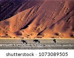 oryx in the dunes  namib ... | Shutterstock . vector #1073089505