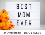 mother's day   lightbox with...   Shutterstock . vector #1073146619