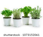 photo of basil  thyme  parsley... | Shutterstock . vector #1073152061