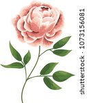 peony flowers in the style of... | Shutterstock .eps vector #1073156081
