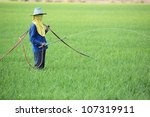 worker spraying pesticide in... | Shutterstock . vector #107319911