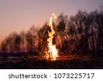beautiful campfire in the... | Shutterstock . vector #1073225717