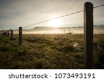 sunrise winter morning of a... | Shutterstock . vector #1073493191