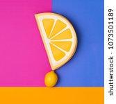 lemon citrus fruit. fashion...   Shutterstock . vector #1073501189