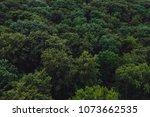 green woods from above   Shutterstock . vector #1073662535