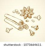 indian dry anisestar badiam pod ... | Shutterstock .eps vector #1073664611