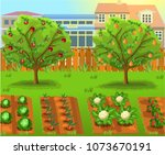 cartoon garden with vegetables... | Shutterstock .eps vector #1073670191